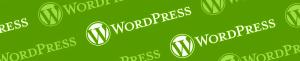 Programmatore WordPress a Torino